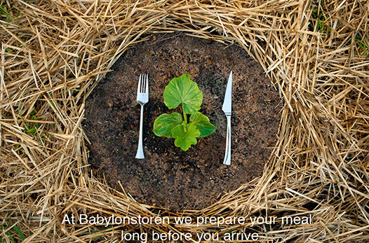 Veggies on your plate come straight from their garden