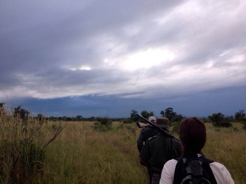 Africa's no walk in the park: Hiking in Kruger in February 2014